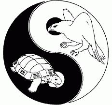 Gydytoja G. Pečiulytė: tradicinė kinų medicina – tai filosofijos, mokslo žinių bei praktinių gydymo būdų visuma